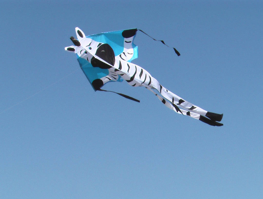 Large Easy Flyer,Zebra,